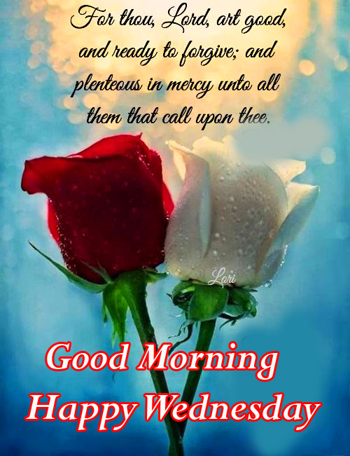 Roses with Good Morning Happy Wednesday Blessing Quotes