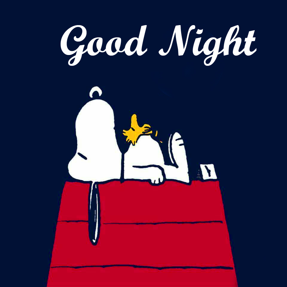 Sleeping Snoopy Good Night Picture
