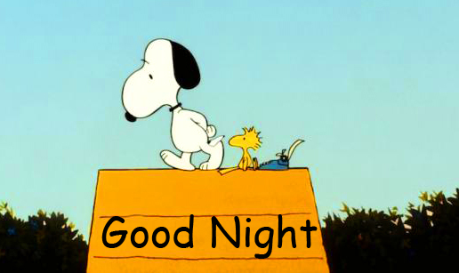 Snoopy on Home with Good Night Wish