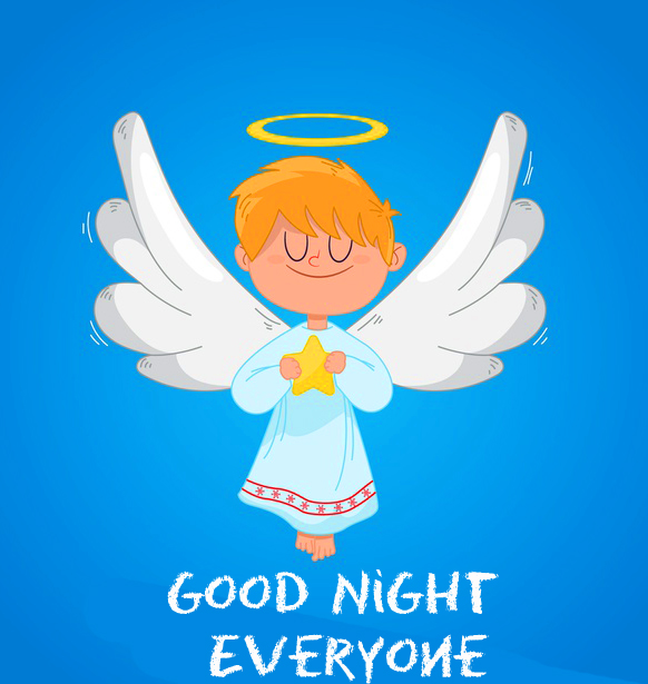 Animated Fairy Good Night Everyone Picture