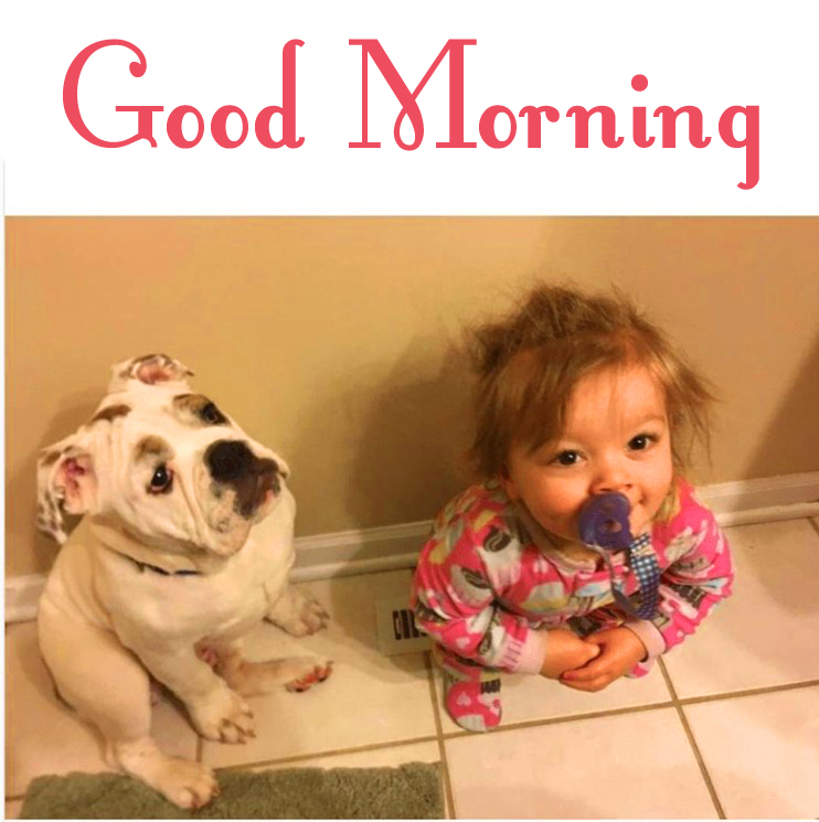 Baby and Dog Funny Good Morning Image