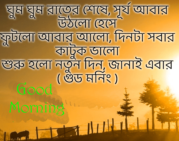 Bengali HD Good Morning Quote Picture