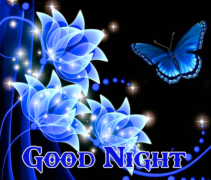 Bright Butterfly and Floral Good Night Wallpaper