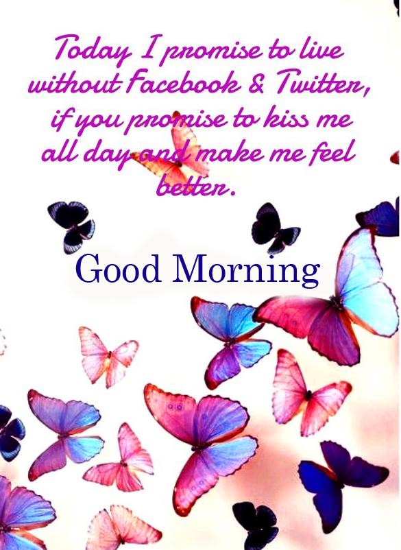 Butterflies with Blessing Quote and Good Morning Wish