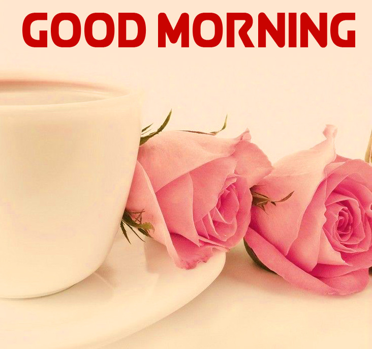 Coffee Cup with Roses and Good Morning Wish