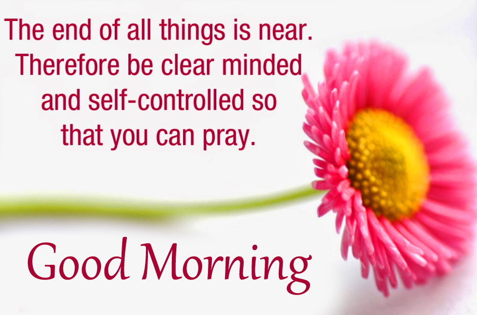 Flower with Good Morning Wish and Blessing