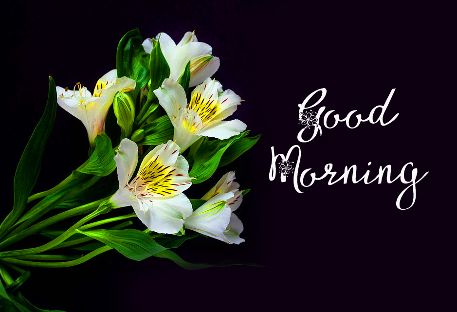 Flowers Bunch Pic with Good Morning Wish