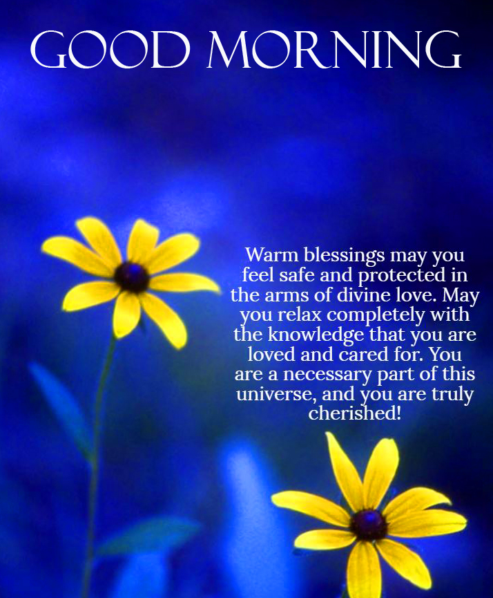 Good Morning Flowers Blessing Quote Picture