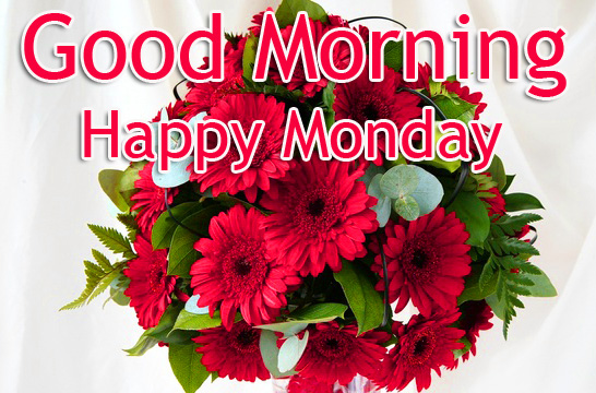 Good Morning Happy Monday Flowers Pic