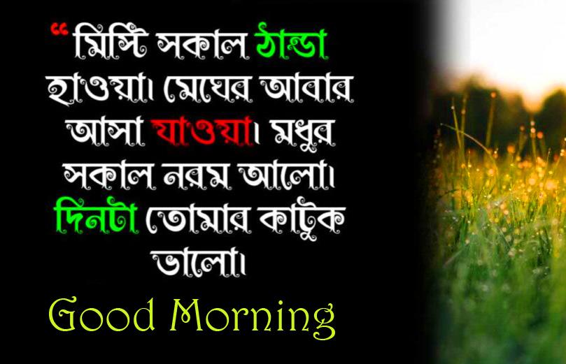 Good Morning Latest Bengali Quote Picture