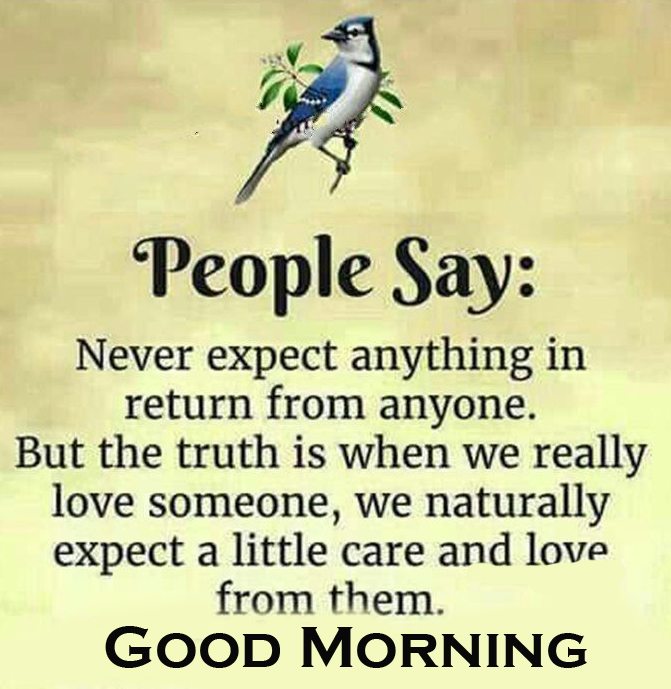Good Morning Love Quote Image