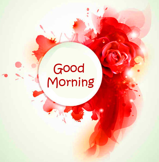 Good Morning Red Floral Wallpaper