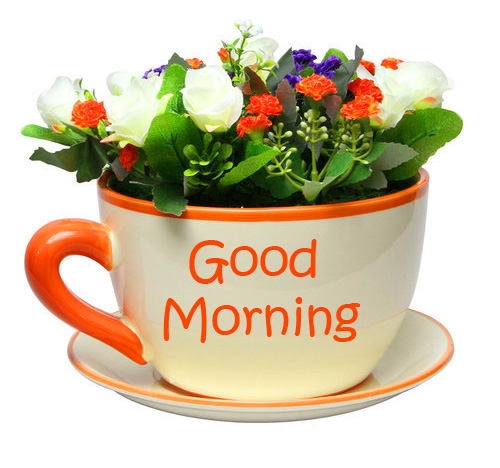 Good Morning Wish with Flowers Cup