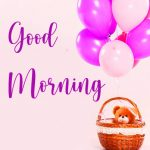 73+ Good Morning Flowers Pictures For WhatsApp