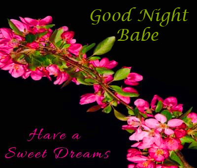 Good Night Babe Image with Flowers