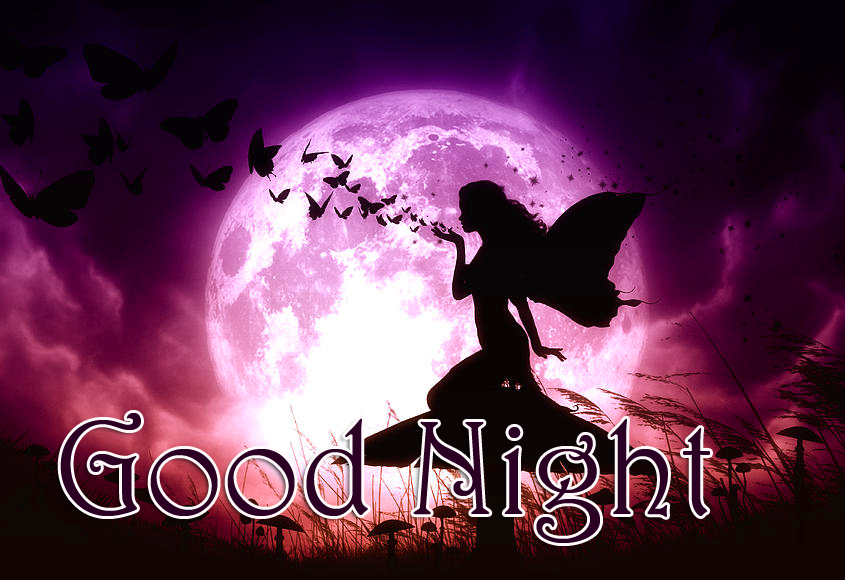 Good Night Butterfly Fairy Picture HD
