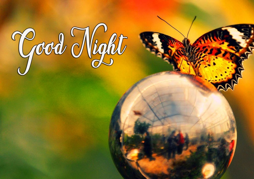41+ Good Night Butterfly Images (hd quality)