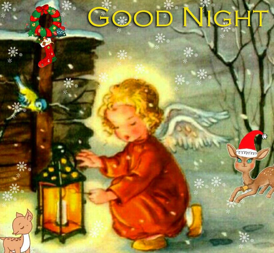 Good Night Cute Picture