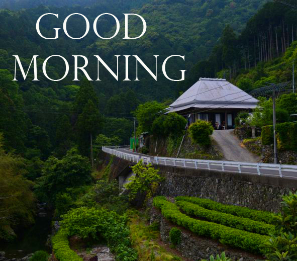 Green Mountains Valley Good Morning Image