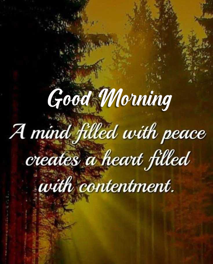 Latest Quote Good Morning Picture