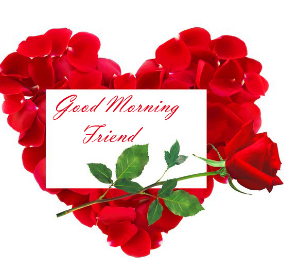 Latest Red Roses Heart with Good Morning Friend Card
