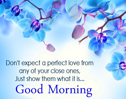 Love Quote Good Morning Picture