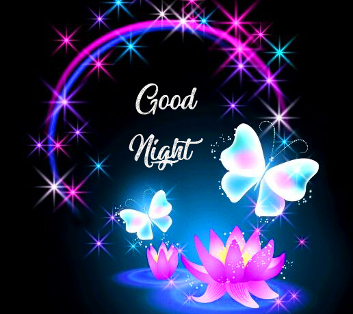 Sweet Butterfly Good Night Pic