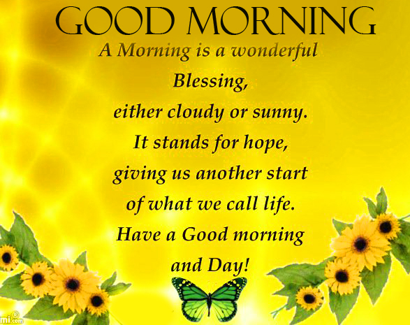 Wonderful Good Morning Blessing Quote Pic