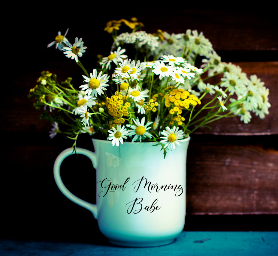 Flowers Cup with Good Morning Babe Wish
