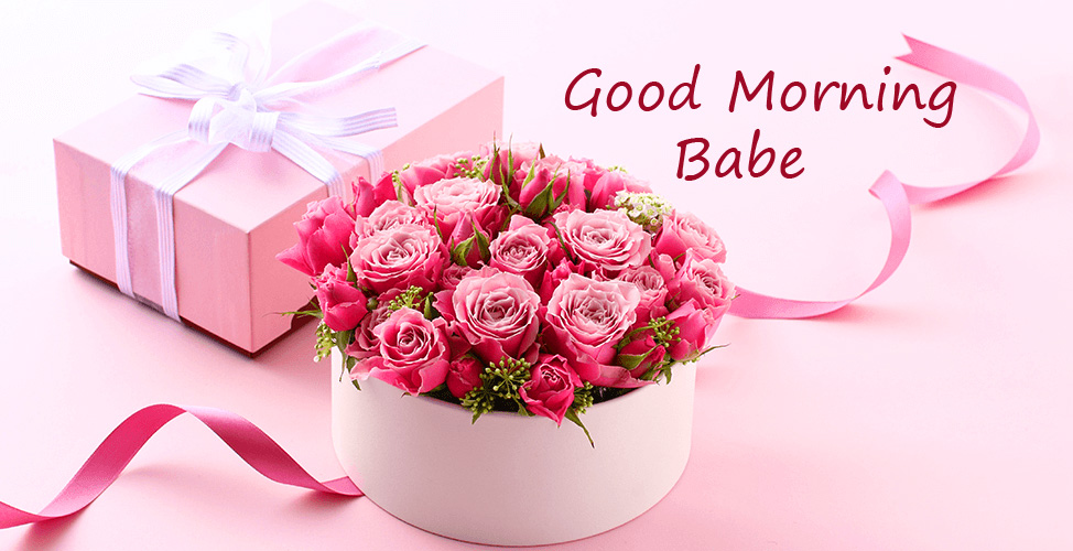 Flowers HD Good Morning Babe Picture