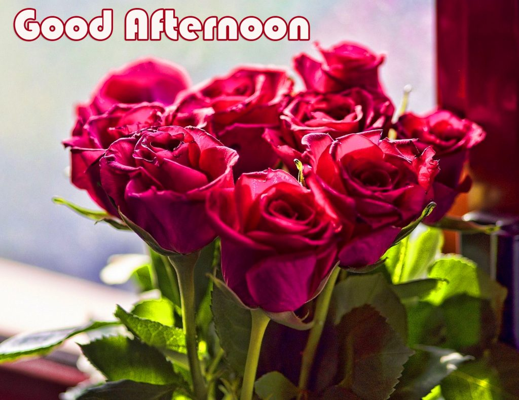 39+ Good Afternoon Images Download