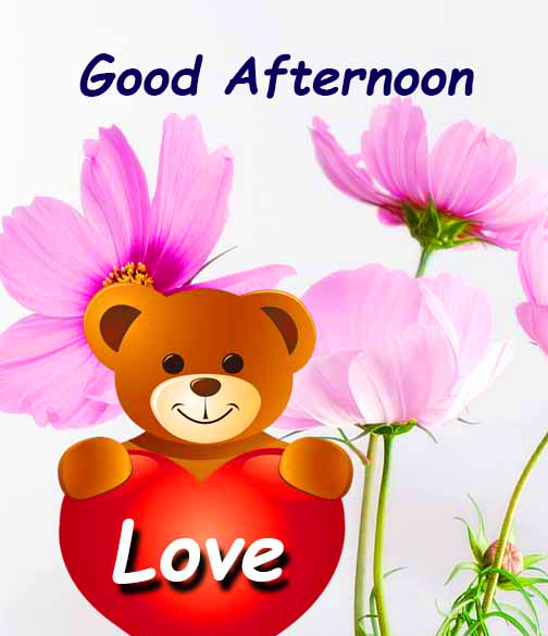 Good Afternoon Love Cute Pic