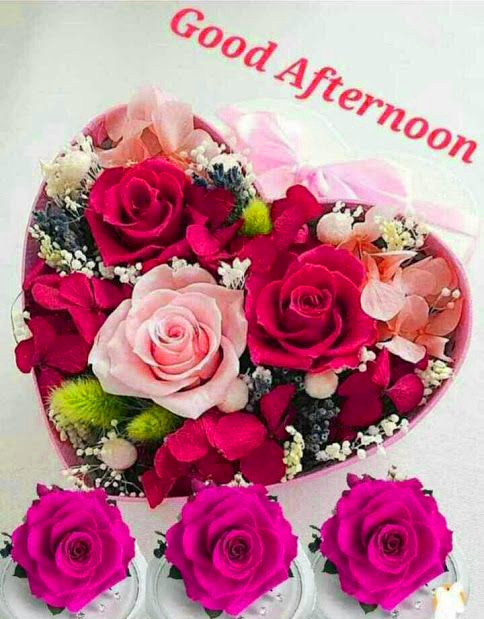 Good Afternoon Love Flowers Image