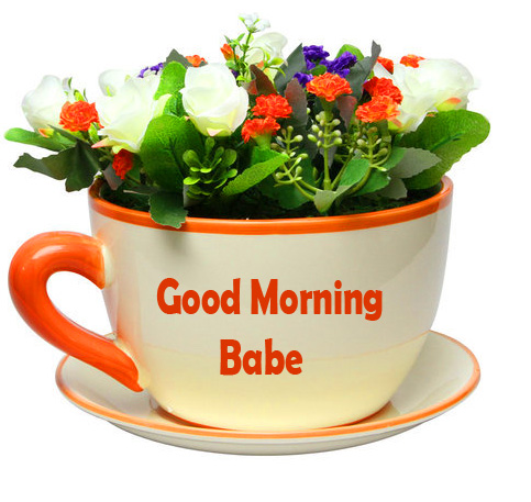 Good Morning Babe Flowers Cup Picture