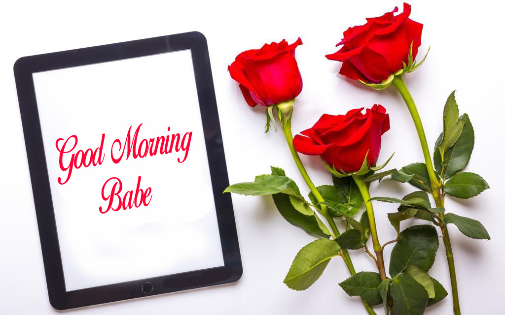 Good Morning Babe Frame with Red Roses