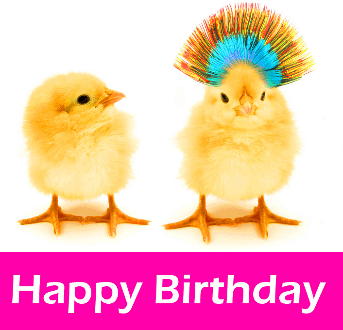 Happy Birthday Cute Chicks Picture HD