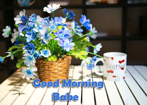 Lovely Flowers Good Morning Babe Picture