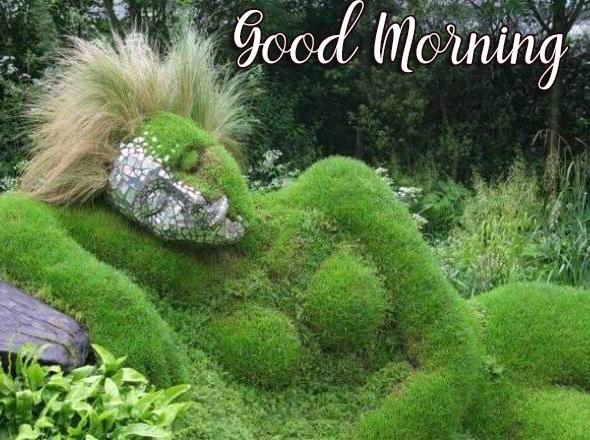 Nature Art with Good Morning Wish